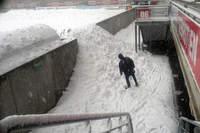 Picot sous la neige - Photo n°0