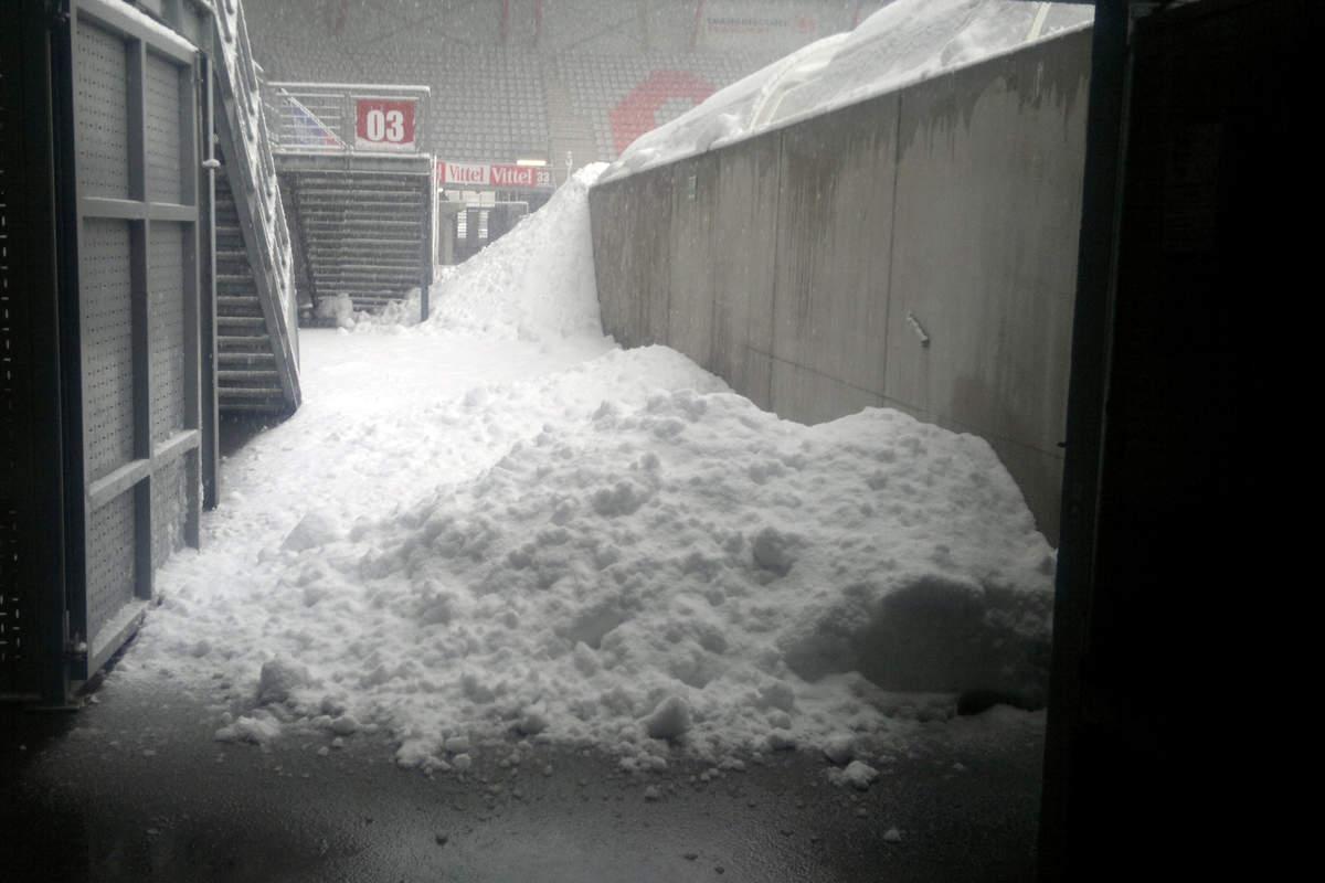 Picot sous la neige - Photo n°1