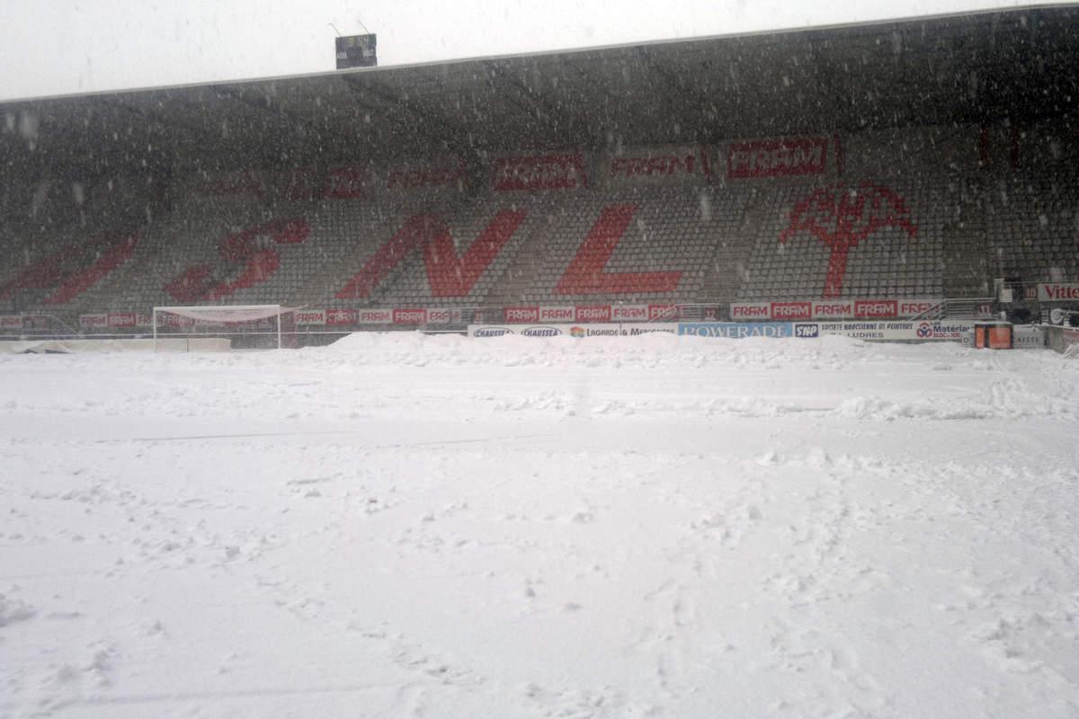 Picot sous la neige - Photo n°2