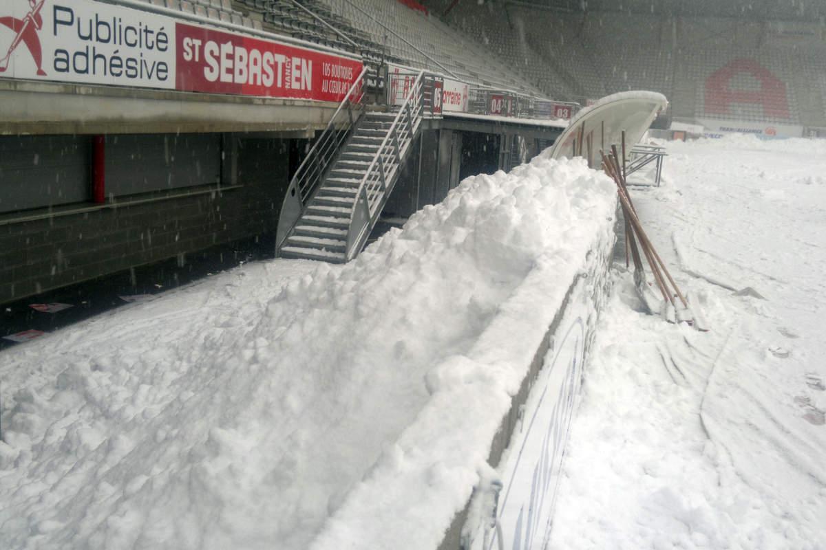 Picot sous la neige - Photo n°3