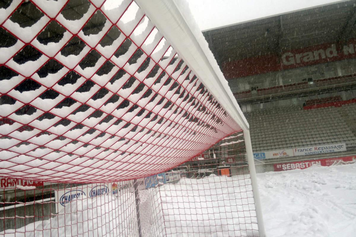 Picot sous la neige - Photo n°4