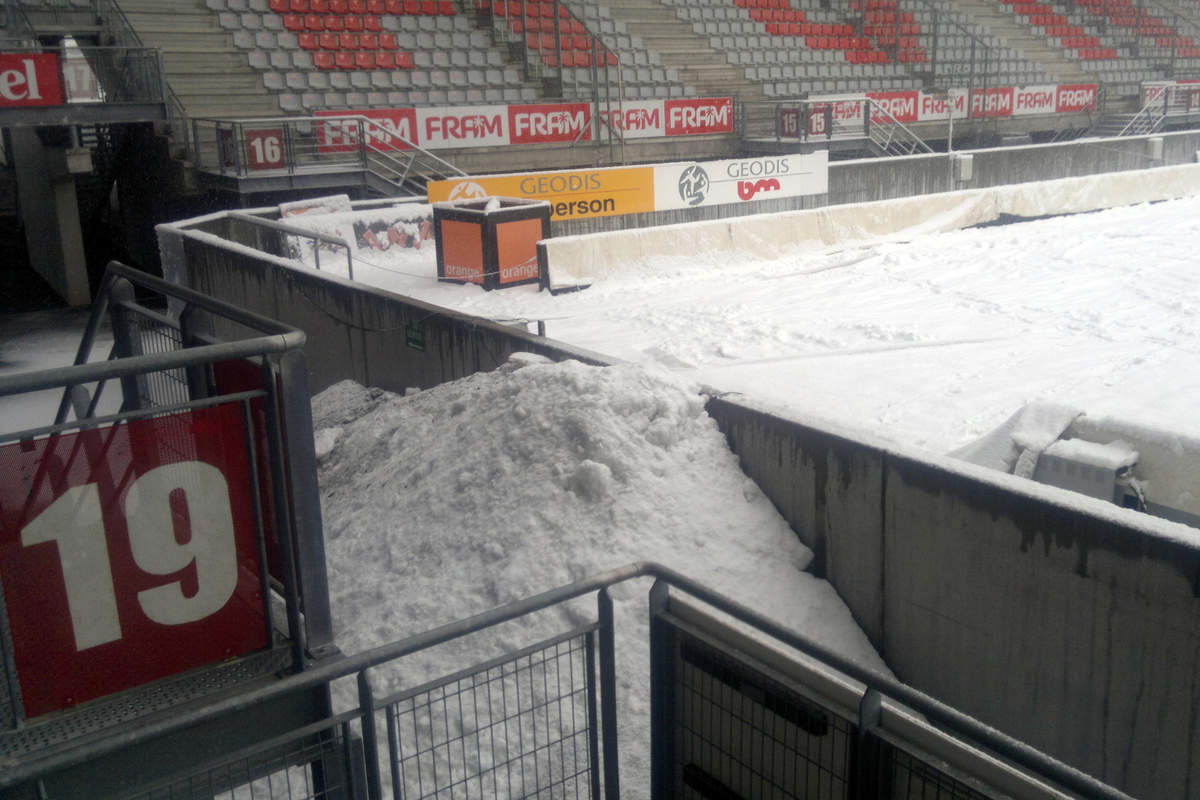 Picot sous la neige - Photo n°8