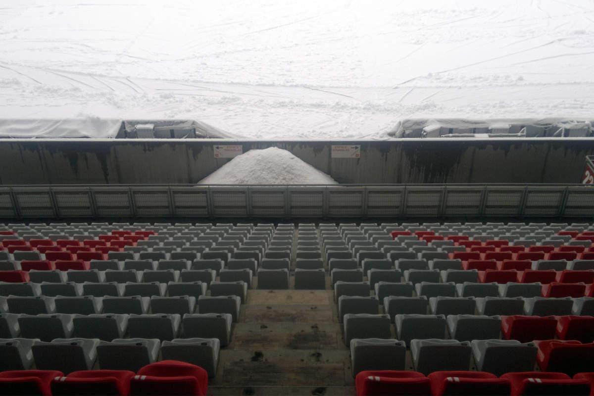 Picot sous la neige - Photo n°10