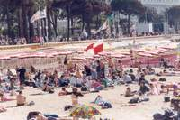 Le train de Cannes en 1992 - Photo n°12
