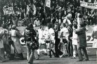 Finale de la coupe de France 1978 - Photo n°30