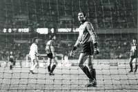 Finale de la coupe de France 1978 - Photo n°17