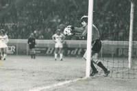 Finale de la coupe de France 1978 - Photo n°26