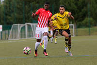 ASNL/Vauban en CFA2 - Photo n°1