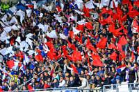France-Ecosse (F) - Photo n°7